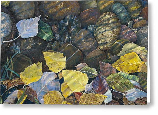 Leaves  Water And Rocks Greeting Card