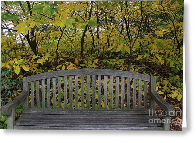 Leaving In The Fall Greeting Card by Geri Glavis