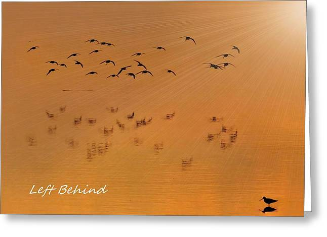 Greeting Card featuring the photograph Left Behind Too by Laura Ragland