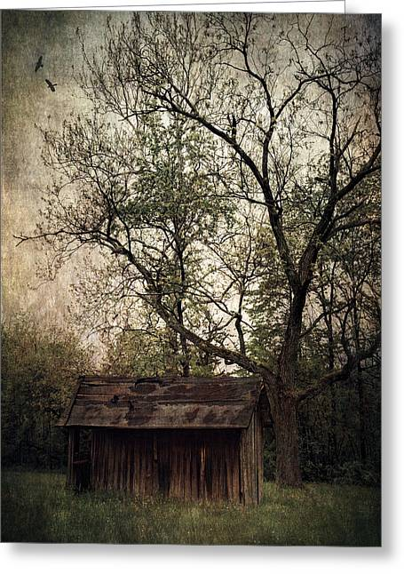 Left Untouched Greeting Card by Dale Kincaid