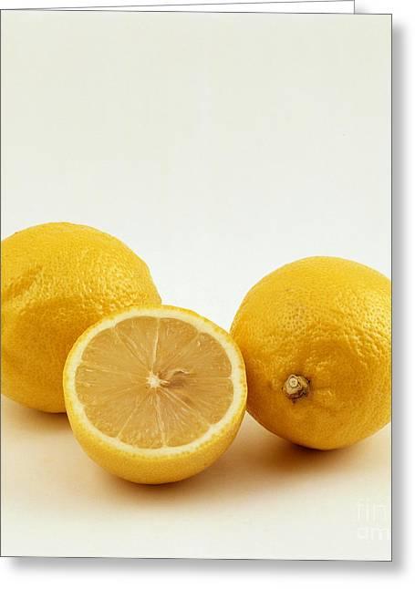 Lemons Greeting Card by Tierbild Okapia