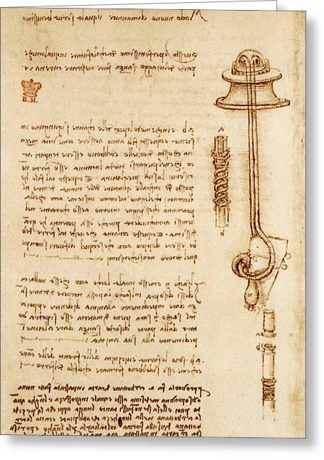 Leonardo: Snorkel Greeting Card by Granger