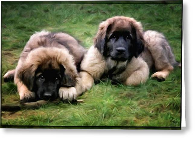 Leonberger Puppies Greeting Card