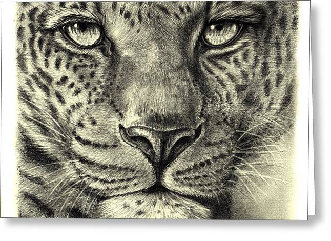 Greeting Card featuring the drawing Leopard by Heidi Kriel