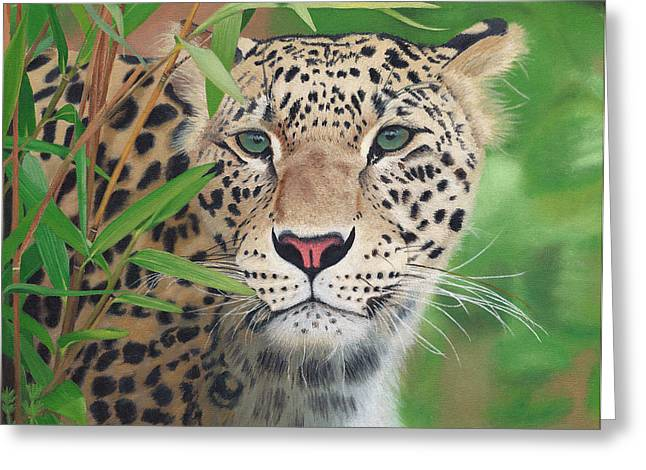 Leopard In The Woods Greeting Card by Alina Kaplanov