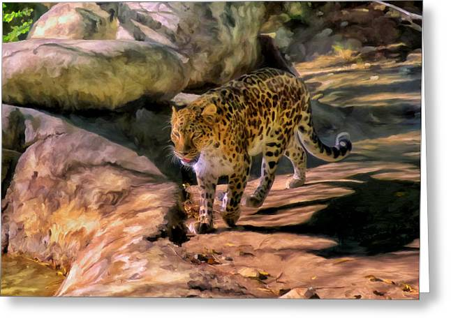 Leopard Greeting Card by Michael Pickett