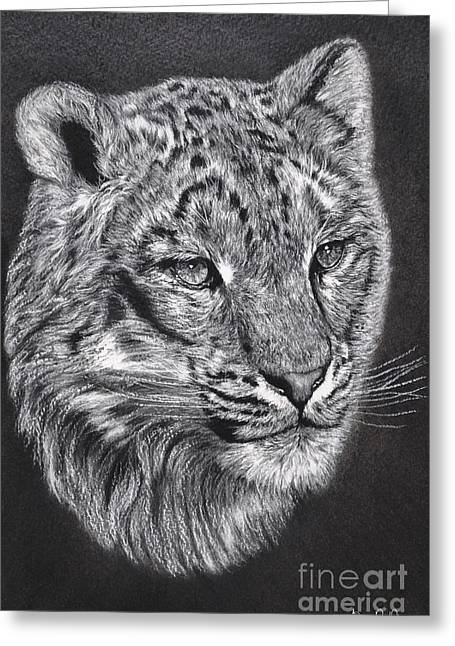 Adams Leopard - Pastel Greeting Card by Adam Olsen