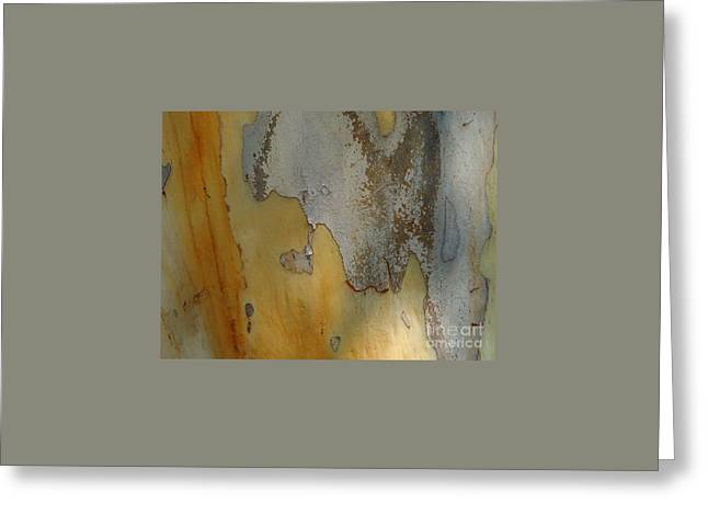 Leopard Tree Bark Abstract No.3 Greeting Card by Denise Clark