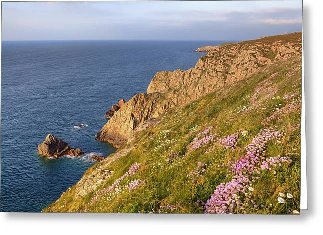 Les Landes - Jersey Greeting Card