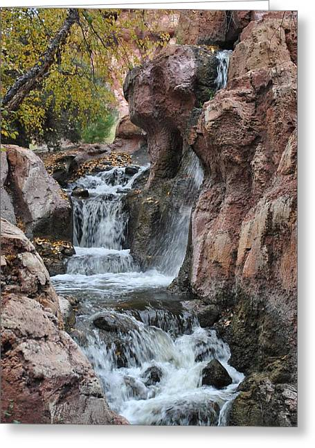 Greeting Card featuring the photograph Let It Fall by Amanda Eberly-Kudamik