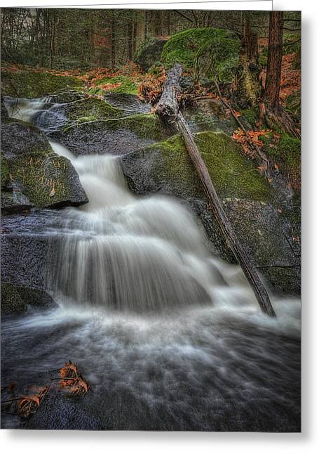 Let It Flow Greeting Card