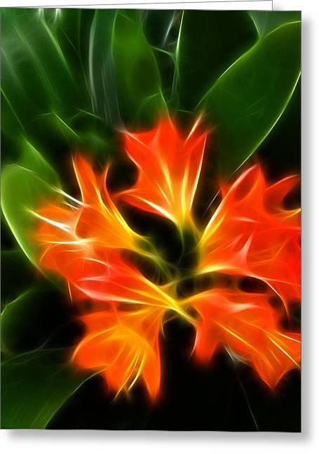 Let It Glow Greeting Card by Fabian Cardon