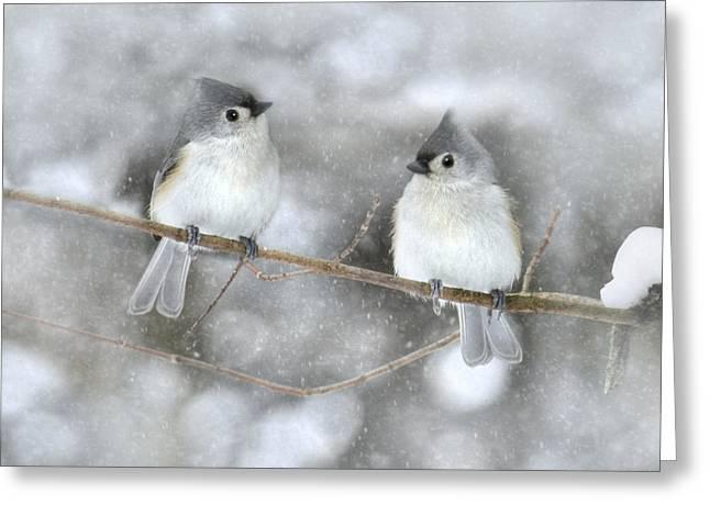 Let It Snow Greeting Card by Lori Deiter