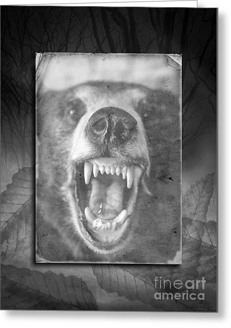 Let Sleeping Bears Lie Greeting Card