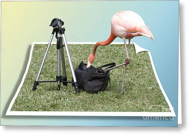 Let Me See... Which Lens Should I Use? Greeting Card by Mariarosa Rockefeller