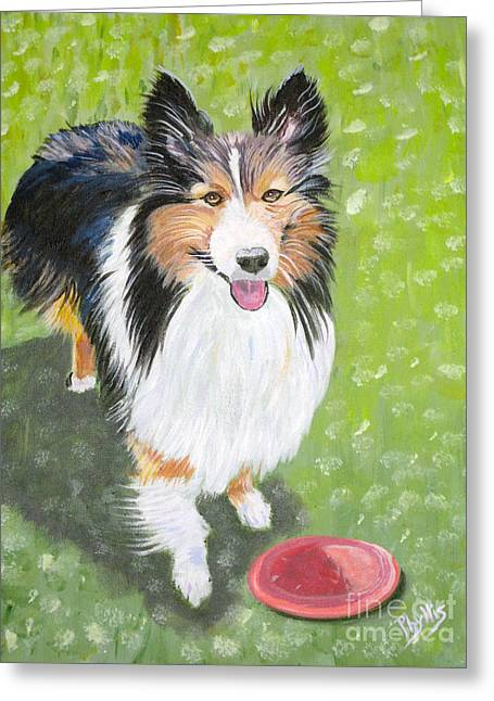 Let Us Play  Border Collie Greeting Card by Phyllis Kaltenbach