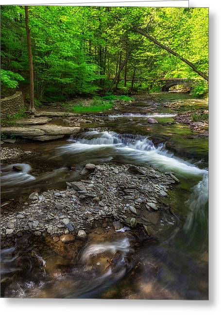 Letchworth Wolf Creek Greeting Card by Mark Papke