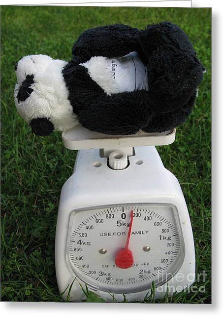 Greeting Card featuring the photograph Let's Check My Weight Now by Ausra Huntington nee Paulauskaite