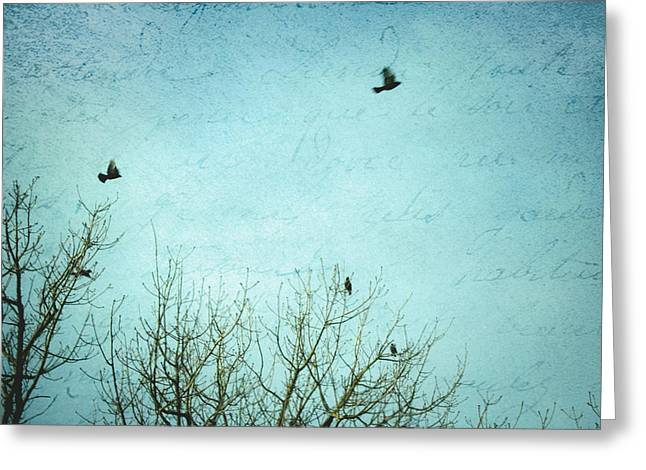 Greeting Card featuring the photograph Letters Of Flight by Lisa Parrish
