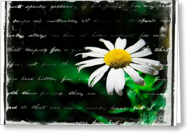 Letters Of Spring Greeting Card by Perry Webster