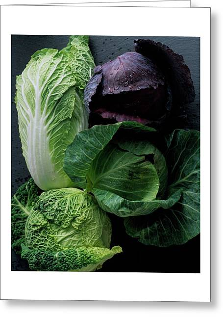 Lettuce Greeting Card