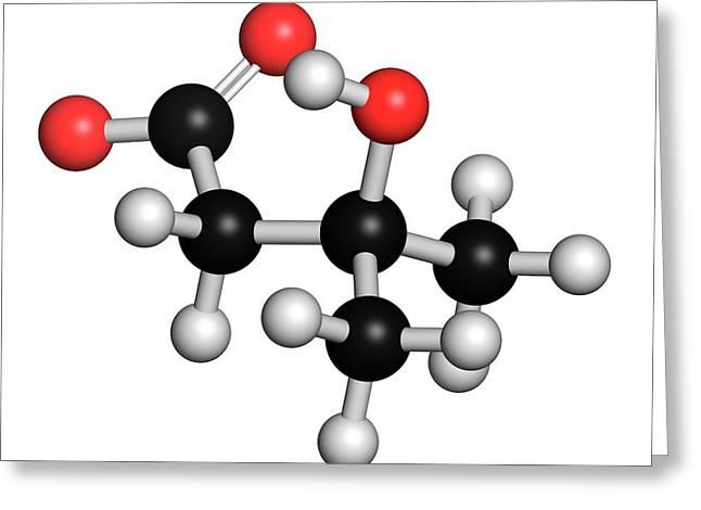 Leucine Metabolite Molecule Greeting Card