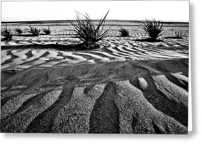 Greeting Card featuring the photograph Level 9 by Ryan Weddle