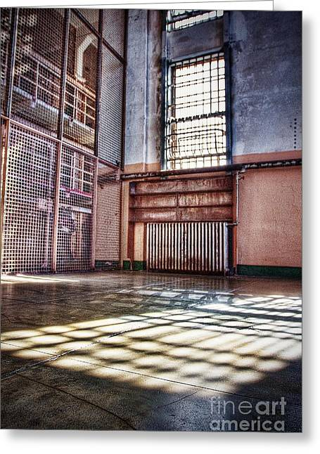 Library Cage Greeting Card by Andrew Brooks