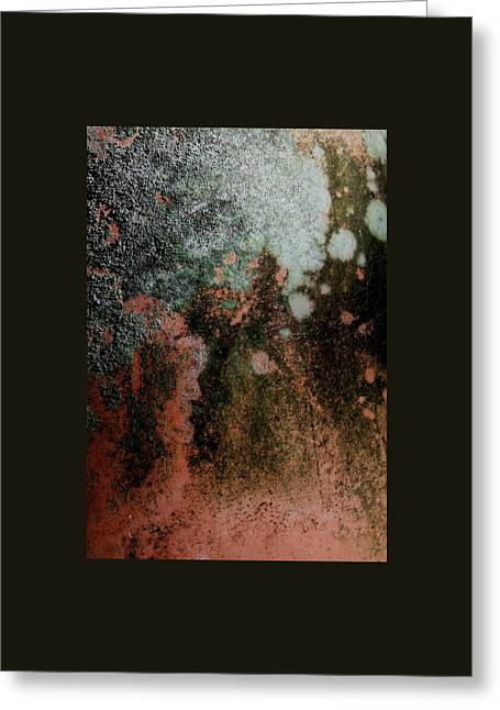 Lichen Abstract 2 Greeting Card by Denise Clark