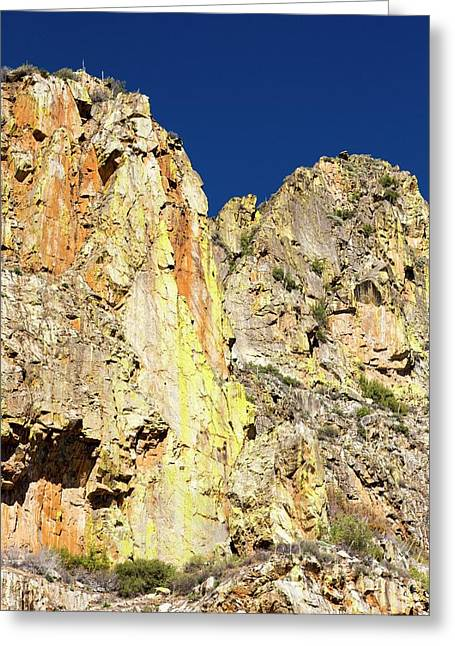 Lichen Covered Rock In Kings Canyon Greeting Card by Ashley Cooper
