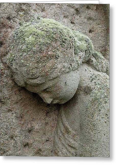 Lichen Growing On Gravestone Greeting Card by Cordelia Molloy