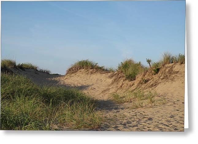 Lieutenant Island Dunes Greeting Card by Barbara McDevitt