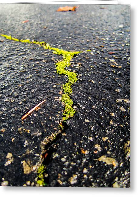 Life Between The Cracks Greeting Card by Mike Lee