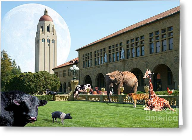 Life Down On The Farm Under The Moon Stanford University California Dsc685 Greeting Card by Wingsdomain Art and Photography
