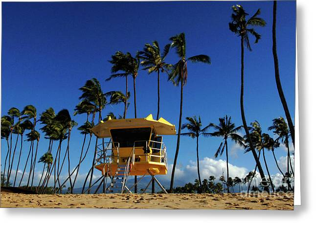 Life Guard Station Greeting Card by Bob Christopher