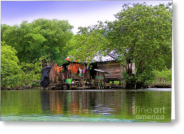 Life In Bocas Del Toro - Panama Greeting Card
