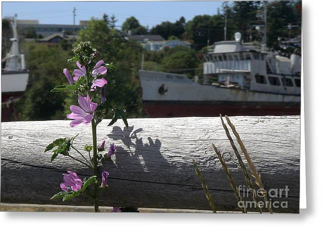 Life In The Boatyard Greeting Card