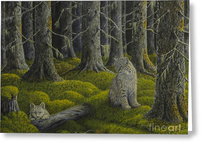 Life In The Woodland Greeting Card by Veikko Suikkanen