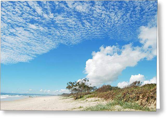 Greeting Card featuring the photograph Life Is A Beach by Ankya Klay
