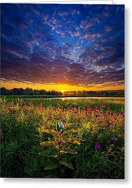 Life Is Worth Living Greeting Card by Phil Koch