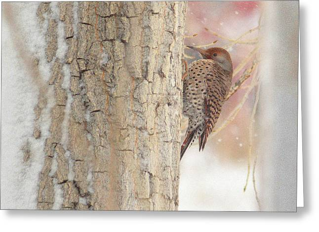 Greeting Card featuring the photograph Life Of A Northern Flicker by Al  Swasey