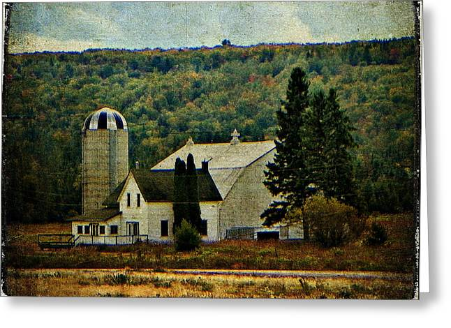 Life On A Farm  Greeting Card by Dianne  Lacourciere