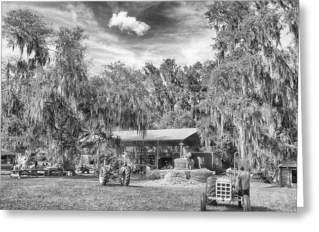 Greeting Card featuring the photograph Life On The Farm by Howard Salmon