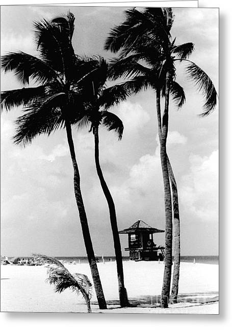 Lifeguard Hut Greeting Card by Gary Gingrich Galleries