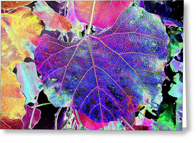 Life's Vein Greeting Card by Kenneth James