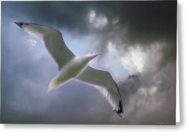 Lift - Oil Paint Effect Greeting Card by Brian Wallace