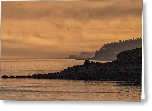 Greeting Card featuring the photograph Lifting Fog At Sunrise On Campobello Coastline by Marty Saccone