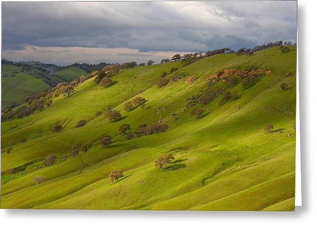 Light And Shadows On A Green Hillside Greeting Card