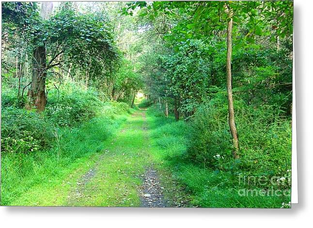 Greeting Card featuring the photograph Light At The End Of The Tunnel by Becky Lupe