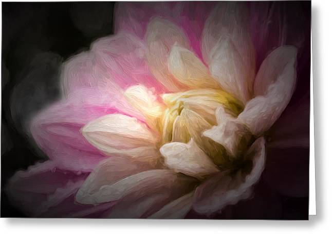 Light From Within Greeting Card by Mary Jo Allen
